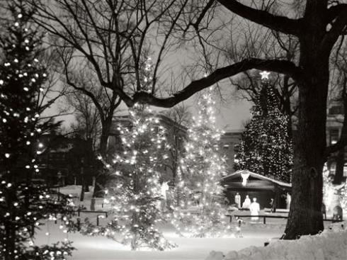 christmas_in_the_park