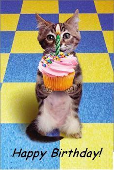 happybirthdaycat